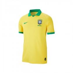 Jersey Nike Brazil America Stadium 19