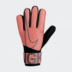 Nike Infantil GK Match JR
