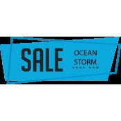 OCEAN STORM (6)